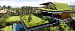 озеленення покрівлі приватних будинків